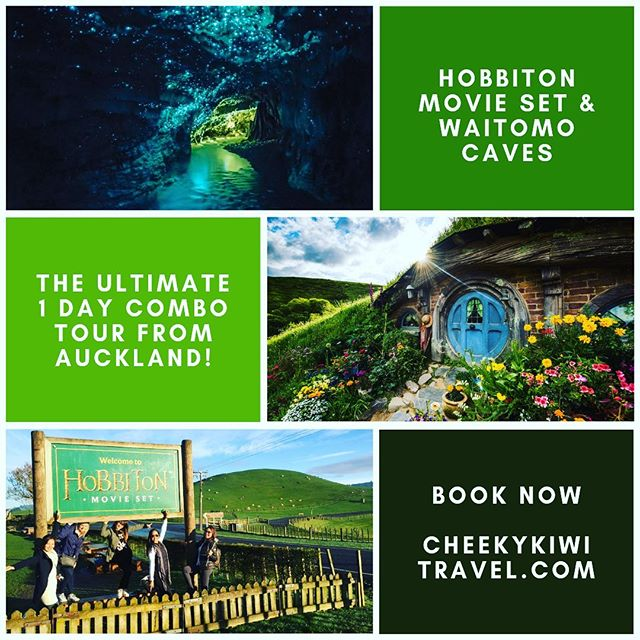 Still spaces left on our ever popular Hobbiton & Waitomo Caves combo tour this Saturday! It's a great way to see some of highlights NZ has to offer, even if you're a Kiwi and it's your own backyard! Small group tour departs and returns to Auckland, with lots of stops along the way, so great for families too. Book now @cheekykiwitravel #hobbiton #waitomocaves #seeyourownbackyard #nzmustdo #smallgroup #nztravel #cheekykiwitravel #fundayout #familyfunday #weekend #escapethecity