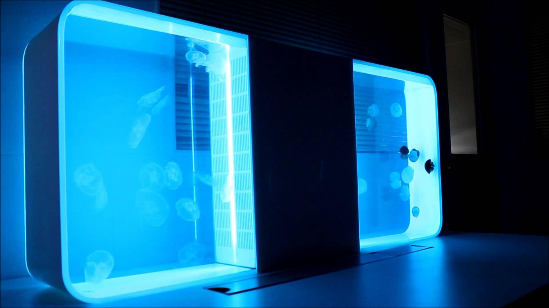 Cubic Jellyfish Aquarium $ 849