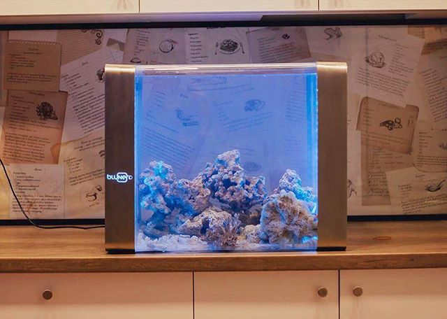 Bluenero Smart Home Aquarium