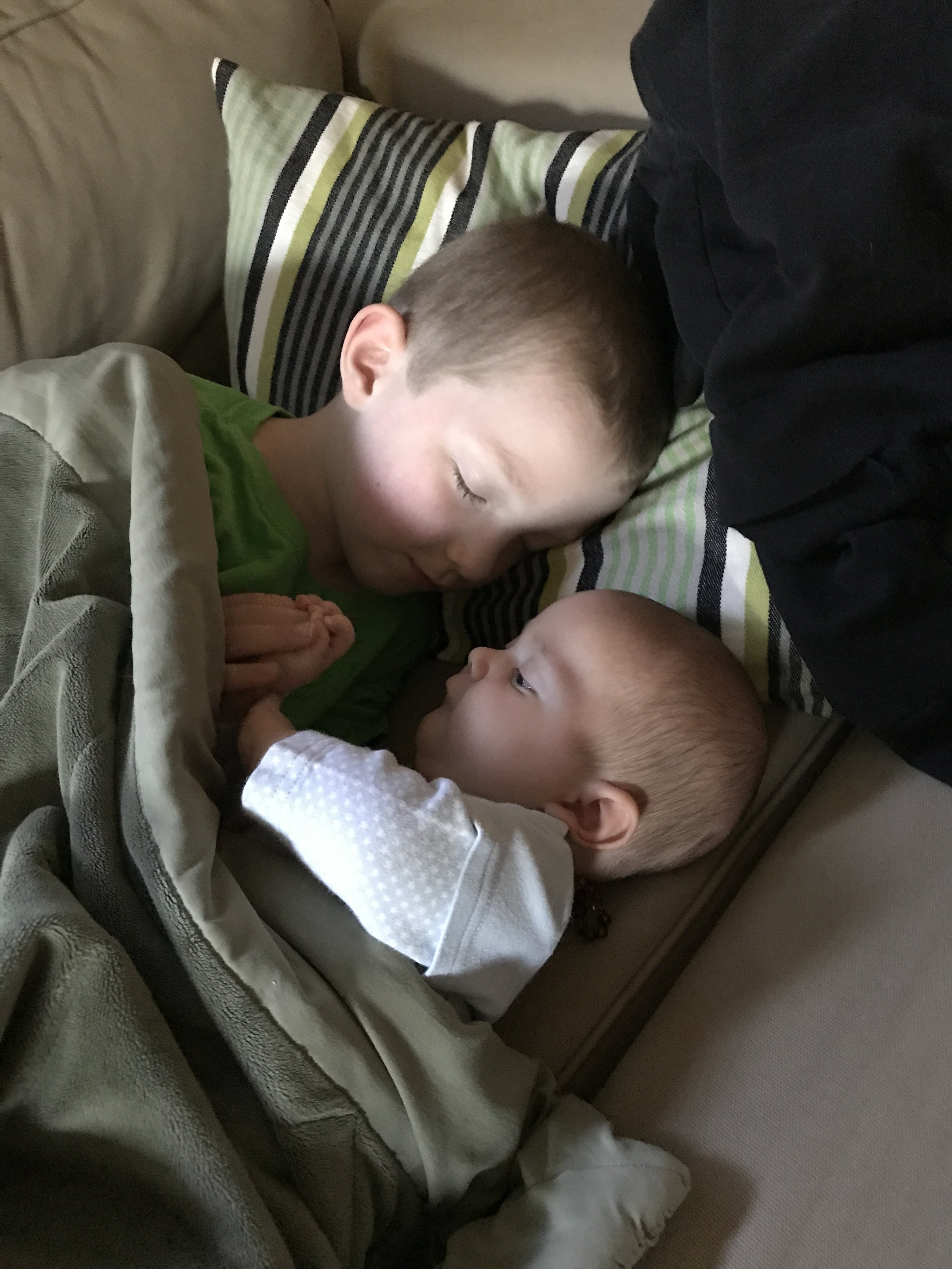 Baby drake and big brother Clark