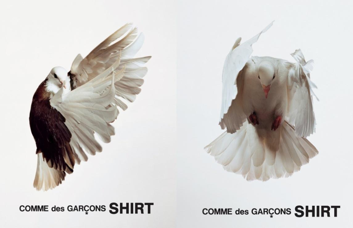 Comme des Garcons Ad Bird.jpg