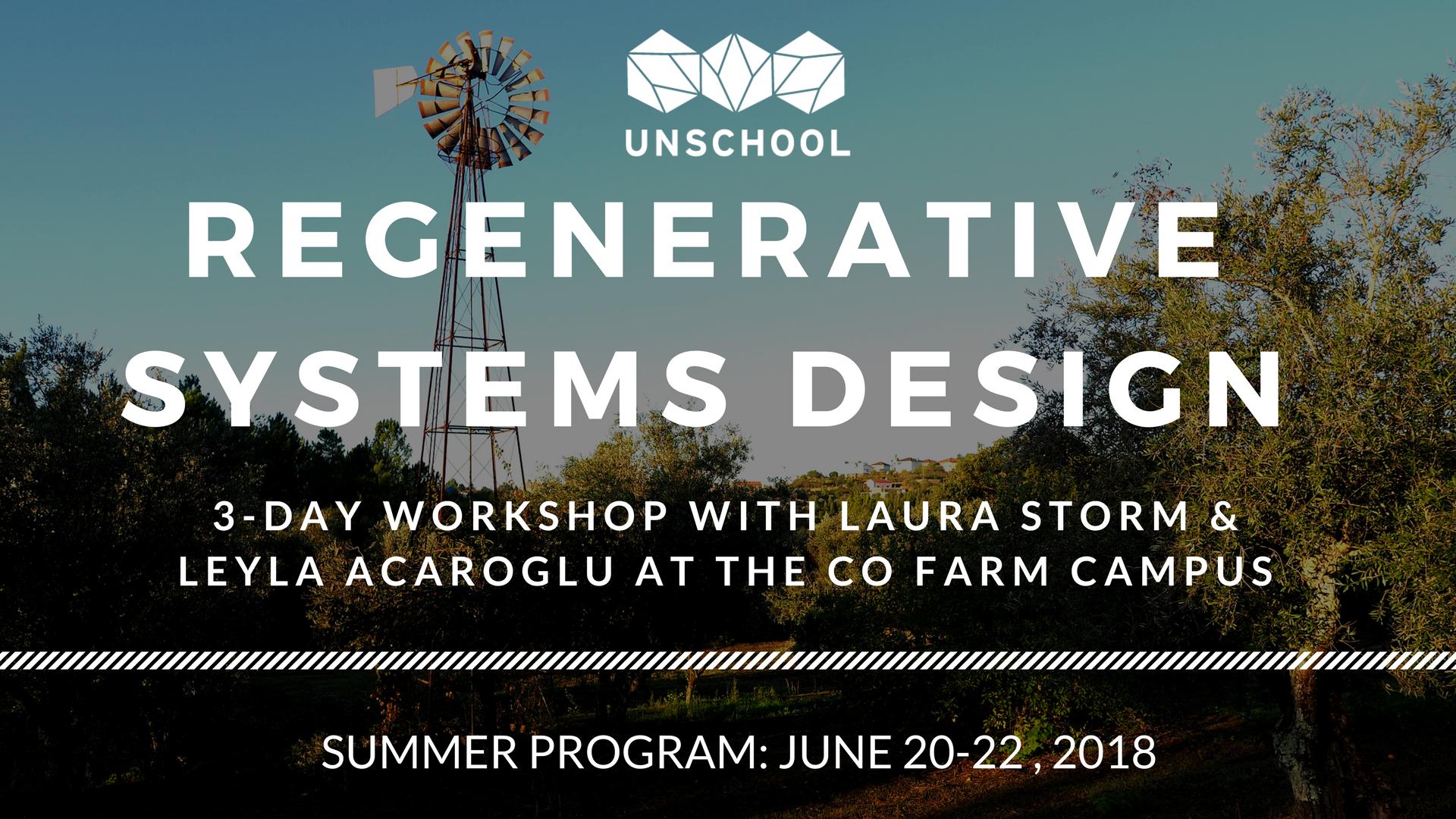 regenerative systems change workshop