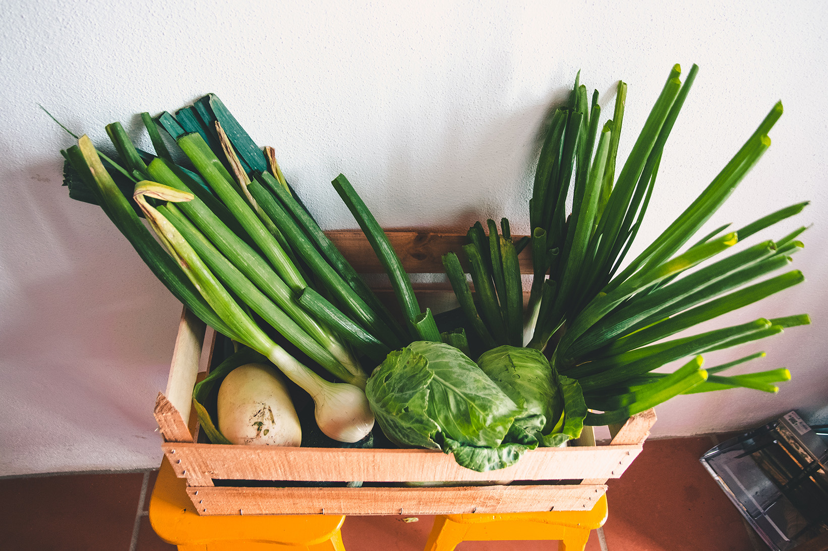 co farm organic food