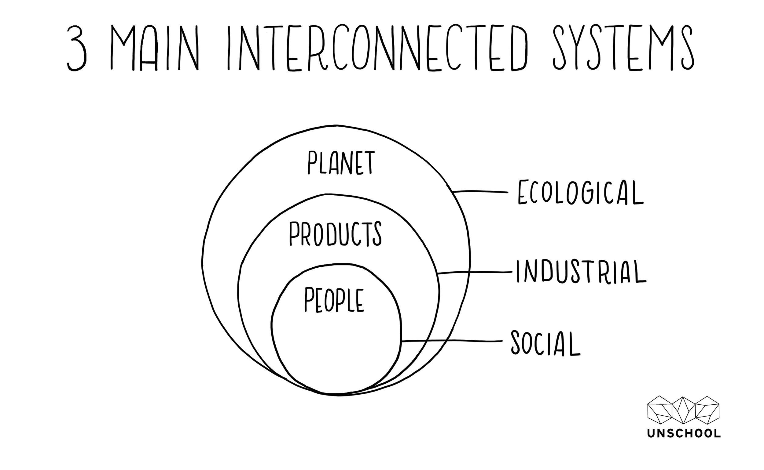 3 main systems.jpg