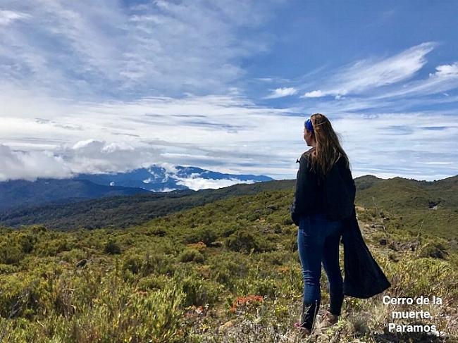 Cerro de la muerte, Paramos.jpg
