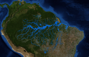 citizen science for the amazon.png