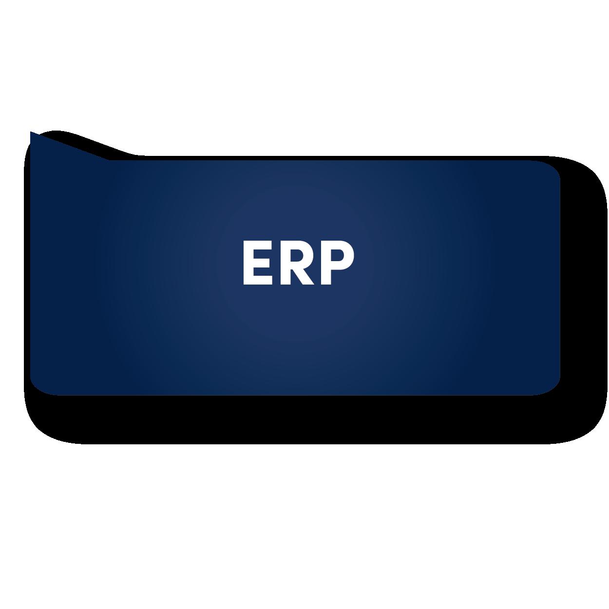 ERP BUBBLE-01.png