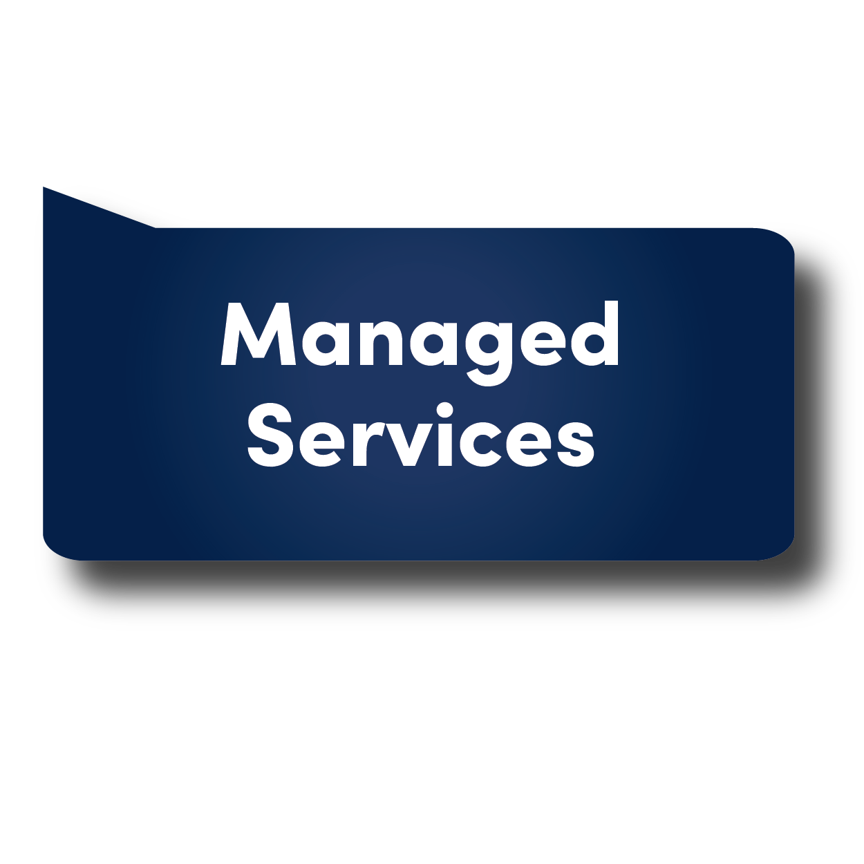 Managed Services BUBBLE-01.png