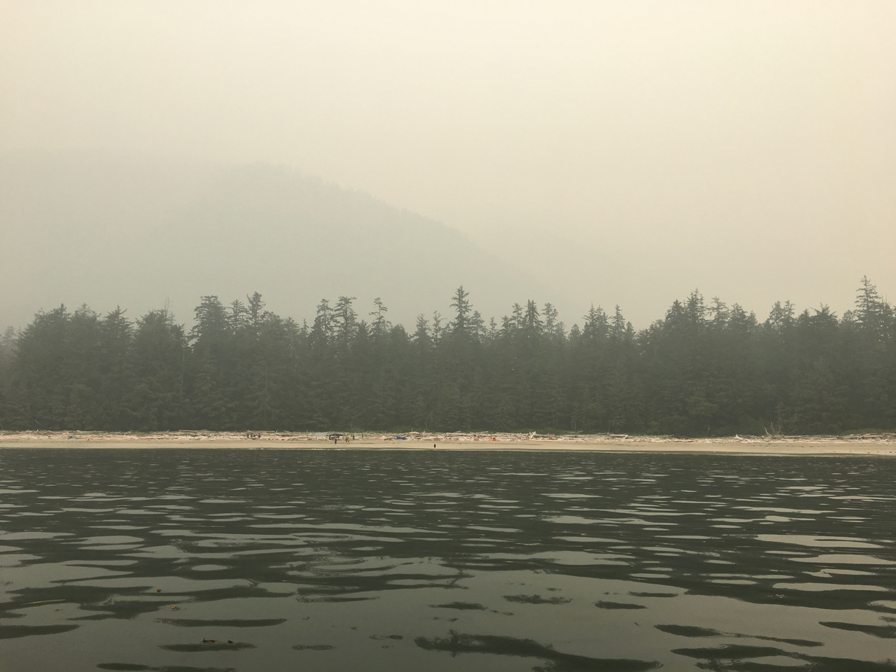 - British Columbia, Washington, Oregon, California…all familiar with the orange haze of smoke.