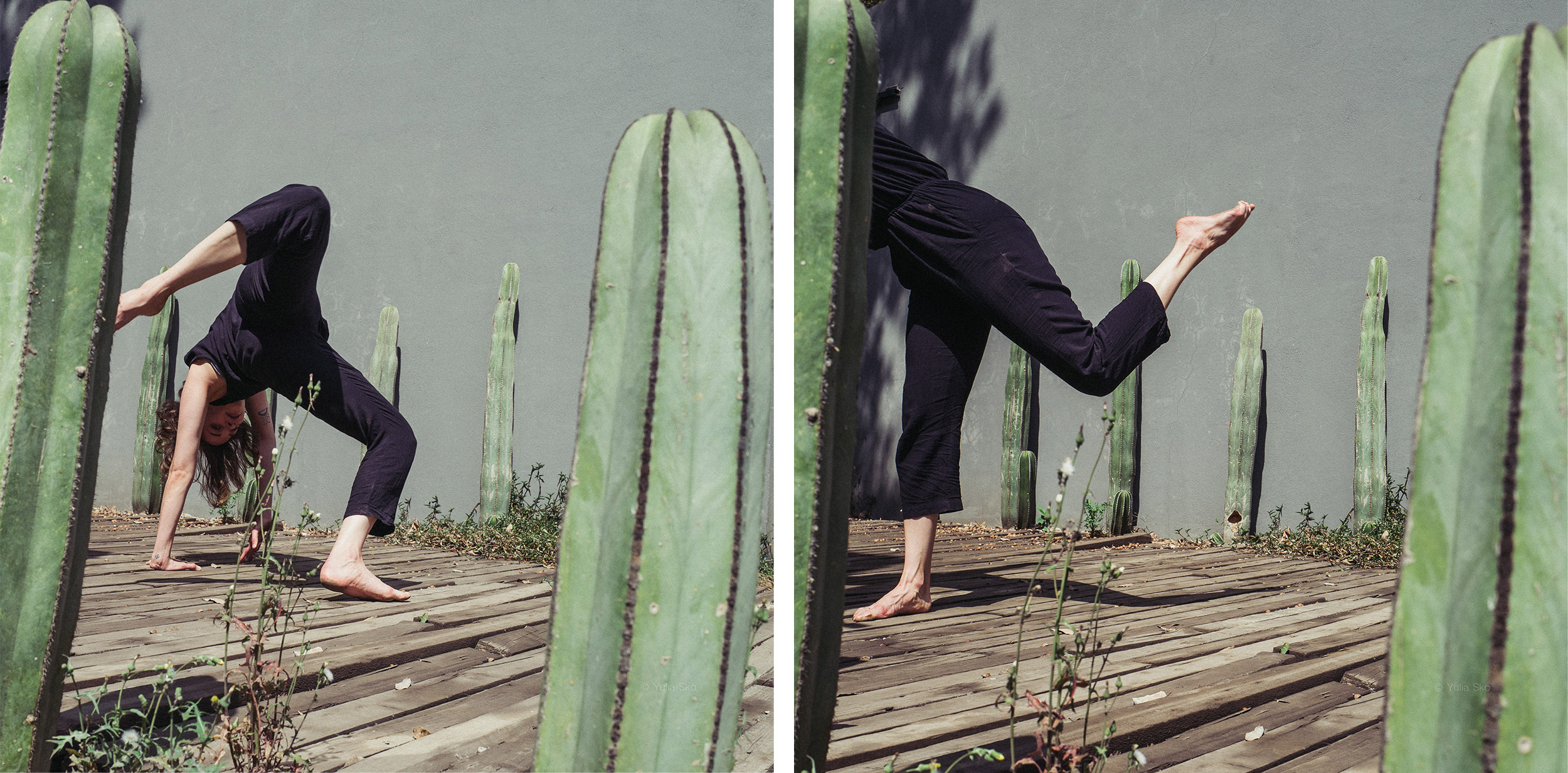 Cactus dance in Mexico: collaboration with Mariana Garcia Garza