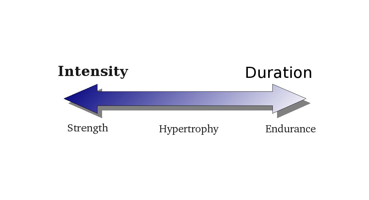 Strength-endurance-continuum.png