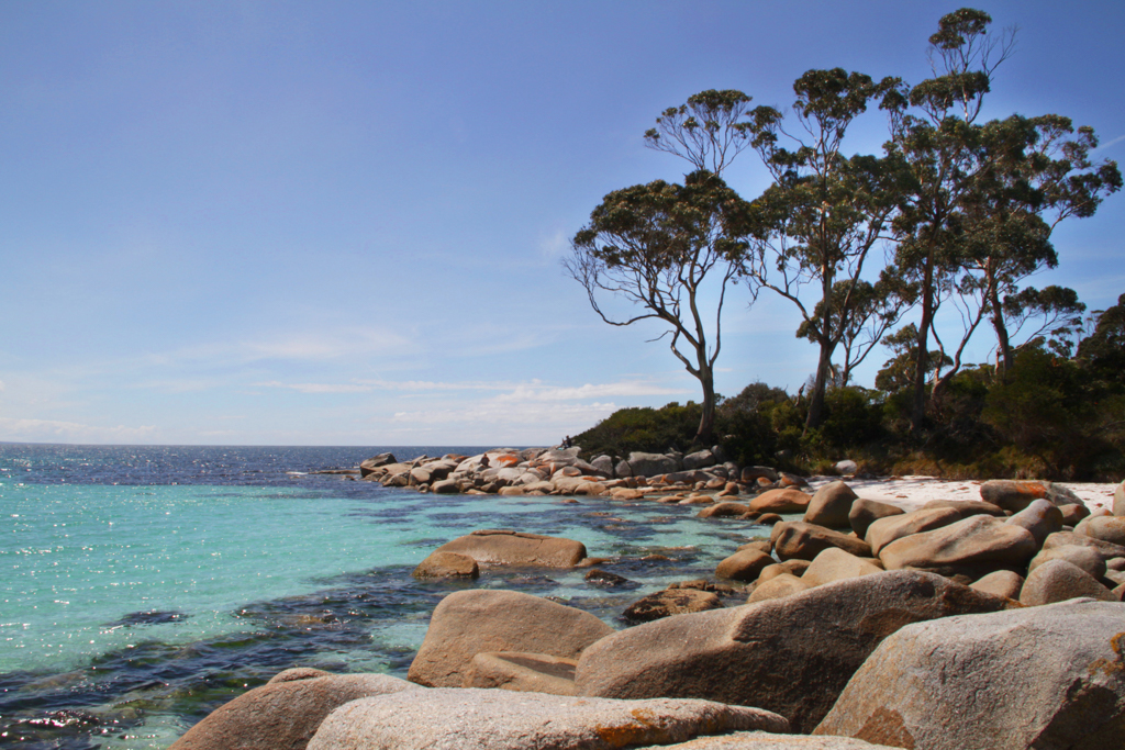 Beautiful Binalong Bay, on the steps of Lichen Restaurant & Cafe