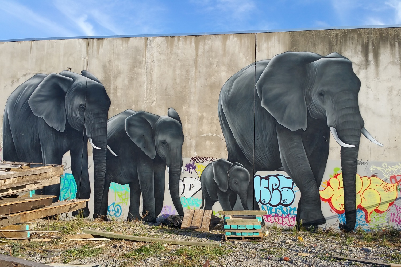 Owen Dippie mural, Spectrum 2015 Christchurch – credit Luke Shirlaw
