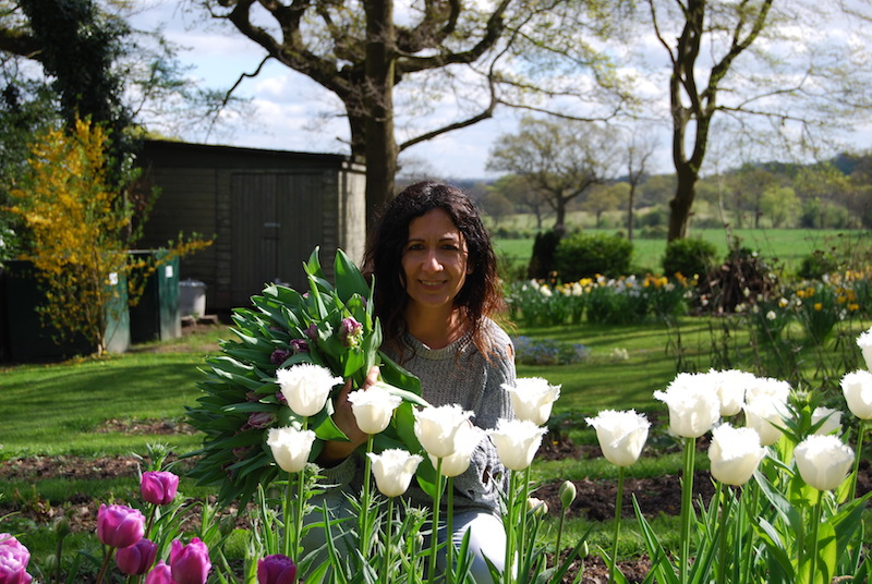 Picking Tulips earlier this year at our cutting patch.....Image Urban Flower Farmer