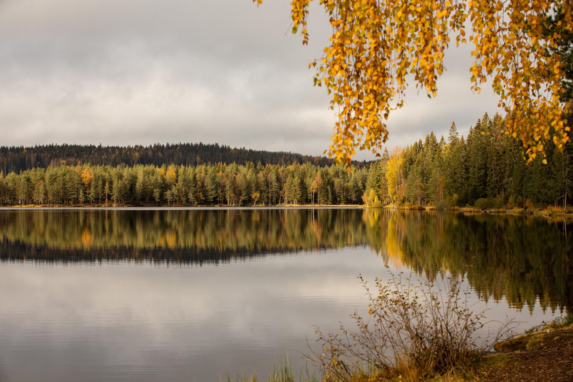 Oslo_Print_59_web.jpg