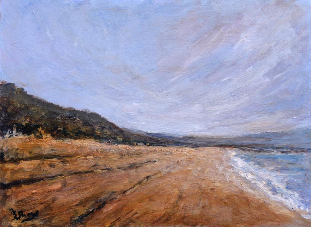 Stephen Shaw-Windy Beach.jpg
