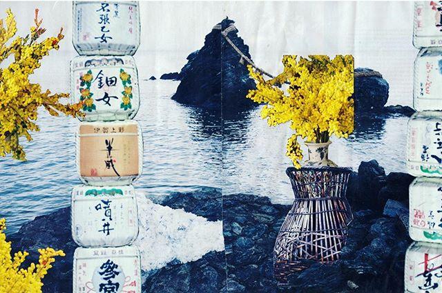 Travel Journal: Japan 🇯🇵 🇯🇵🇯🇵
