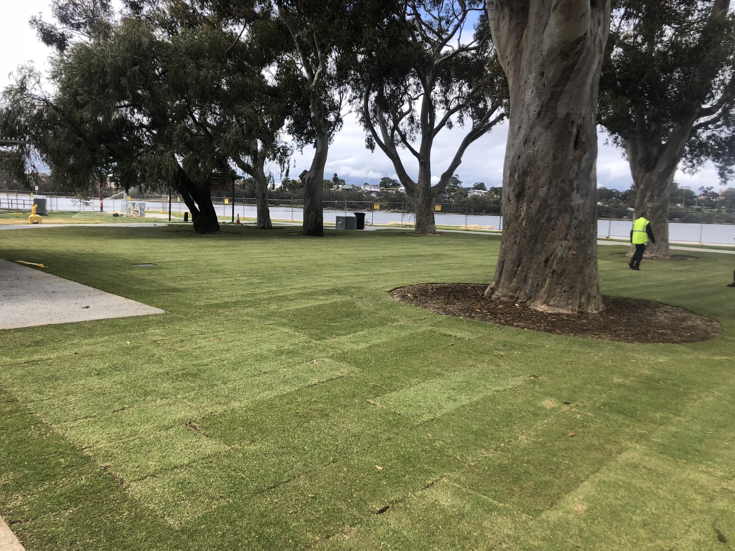 Commercial Lawn Installation -