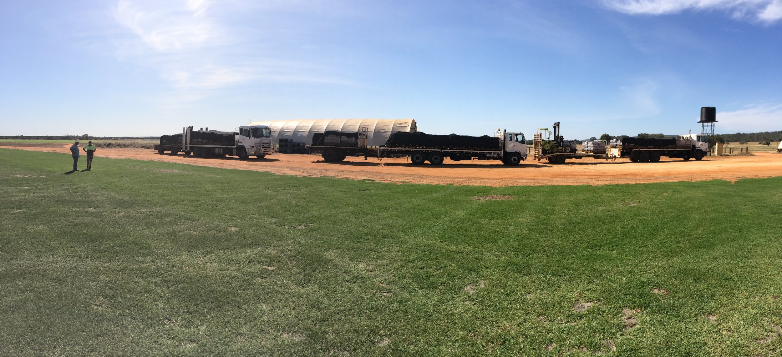 Turf trucks loaded and ready to deliver