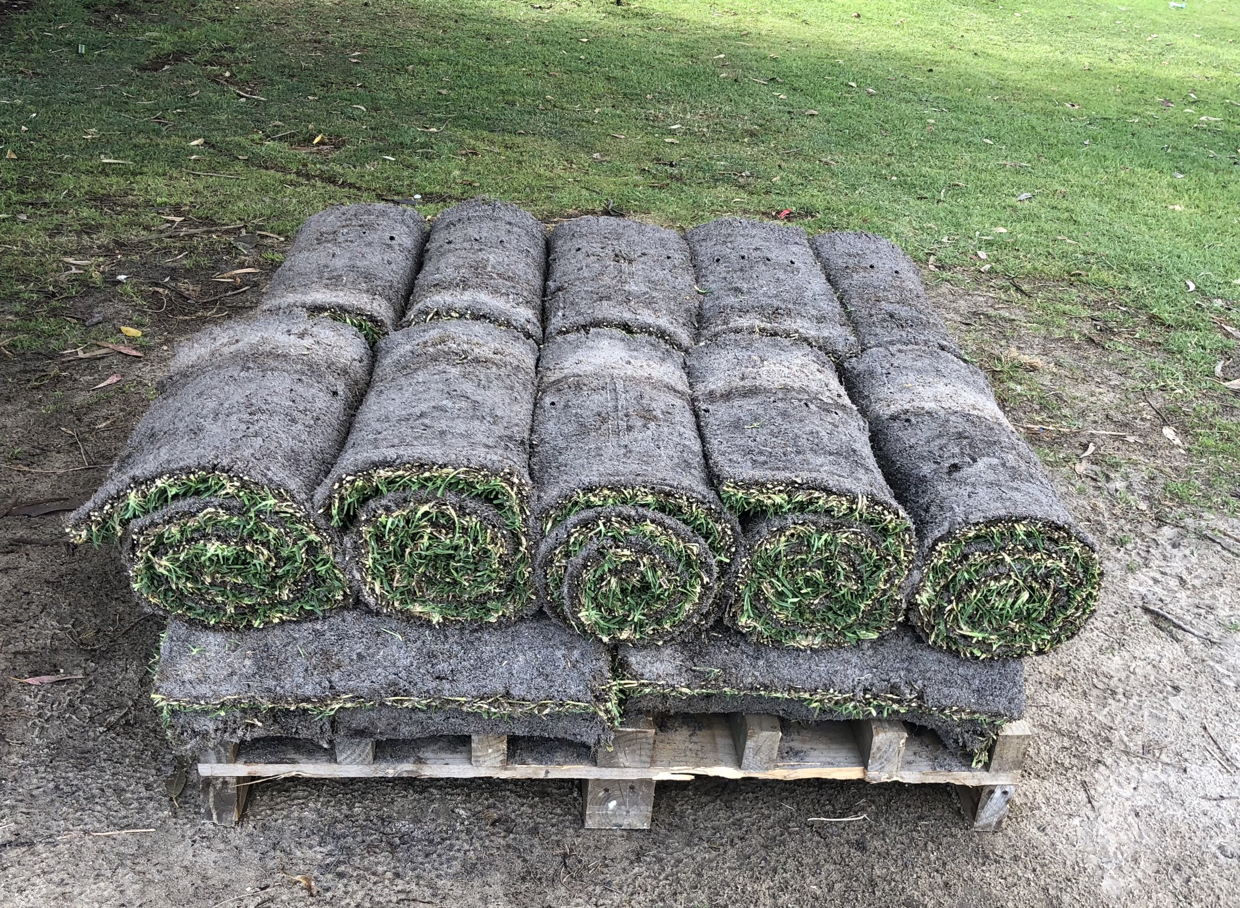 Buffalo roll on lawn ready for pick up