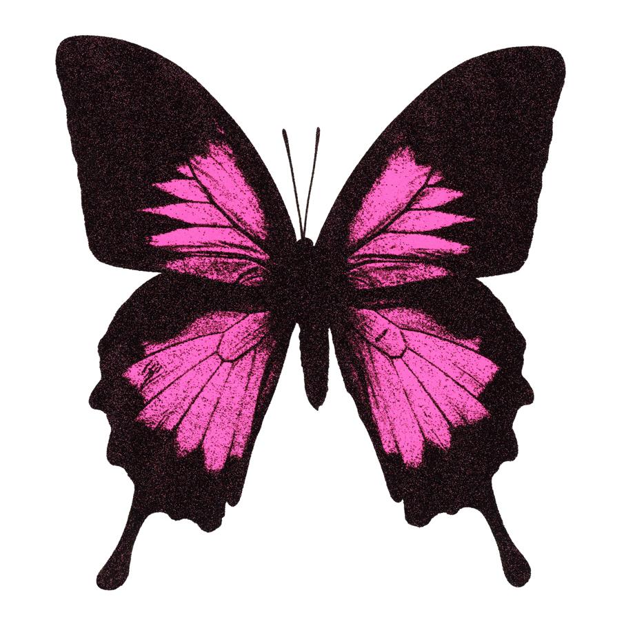 smallbutterflypink.jpg
