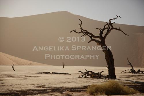 Angelika-Spranger-Resistance.jpg