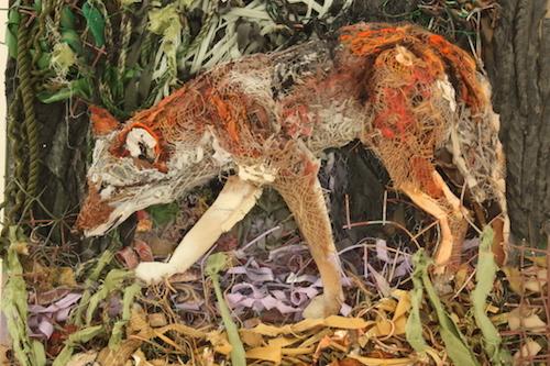 fox-relief.jpg