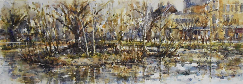 Winter greens, Barnes Pond[1].JPG