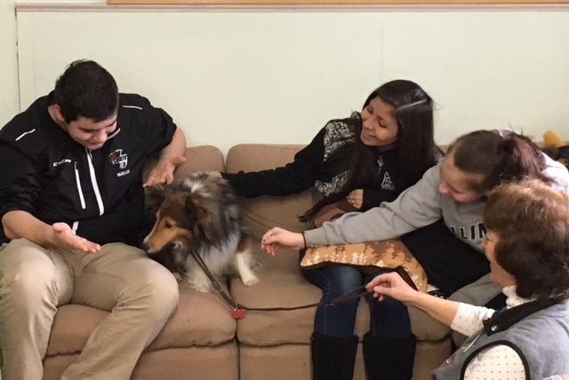 Pet Therapy 5.jpg