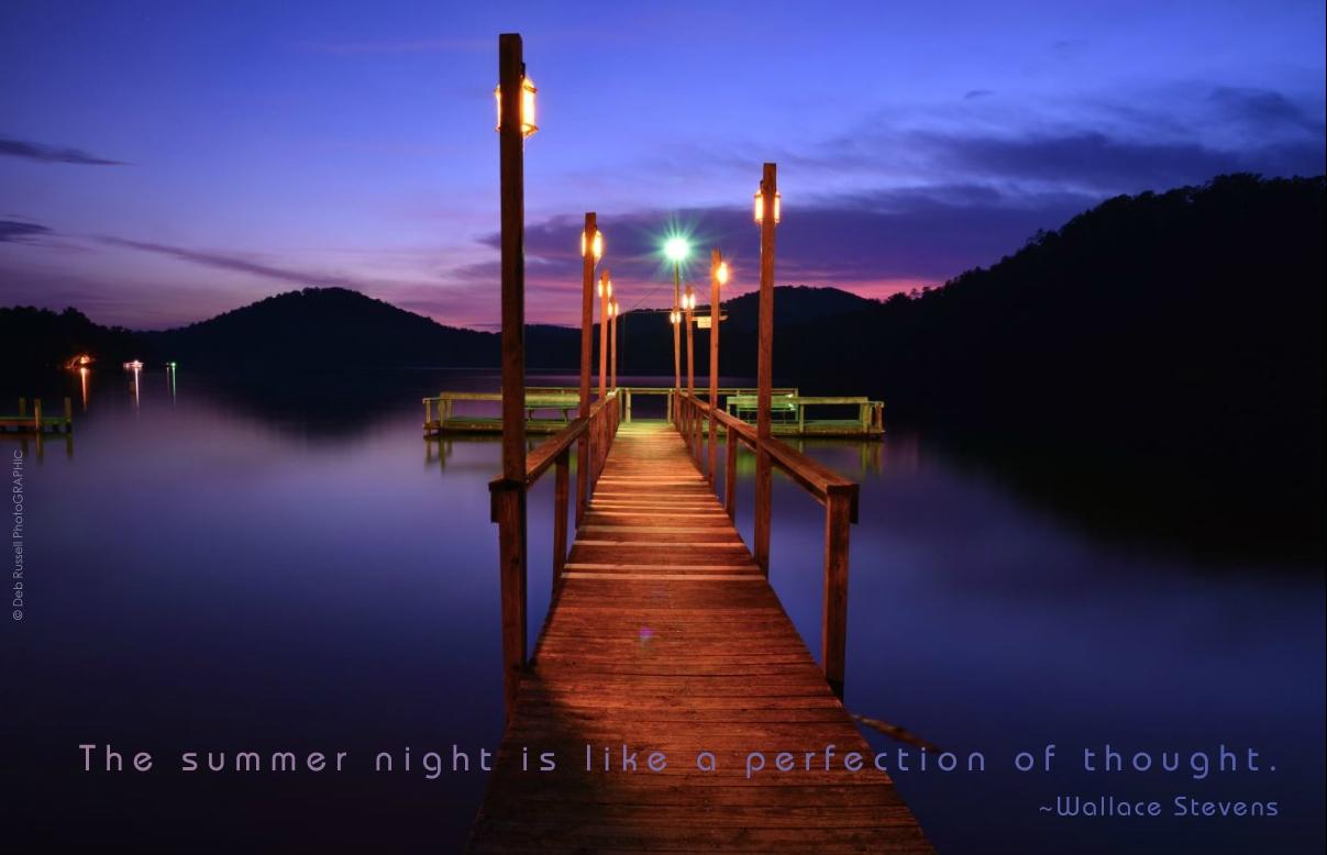 CarolinaForest-Summer night is like.jpg