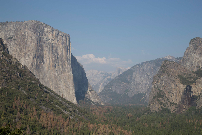 _MG_2791__63_Yosemiteweb_1500.jpg