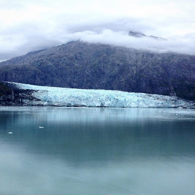 Glacier Bay National Park is home to much more than gorgeous icy scenery. If you ever get the chance to visit, keep an eye out for whales, otters, and even brown bears!
