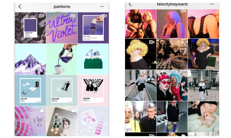 Pantone & Model Felicity Hayward both utilize square grids and row layouts. Each row tells a story and flows to the next story.