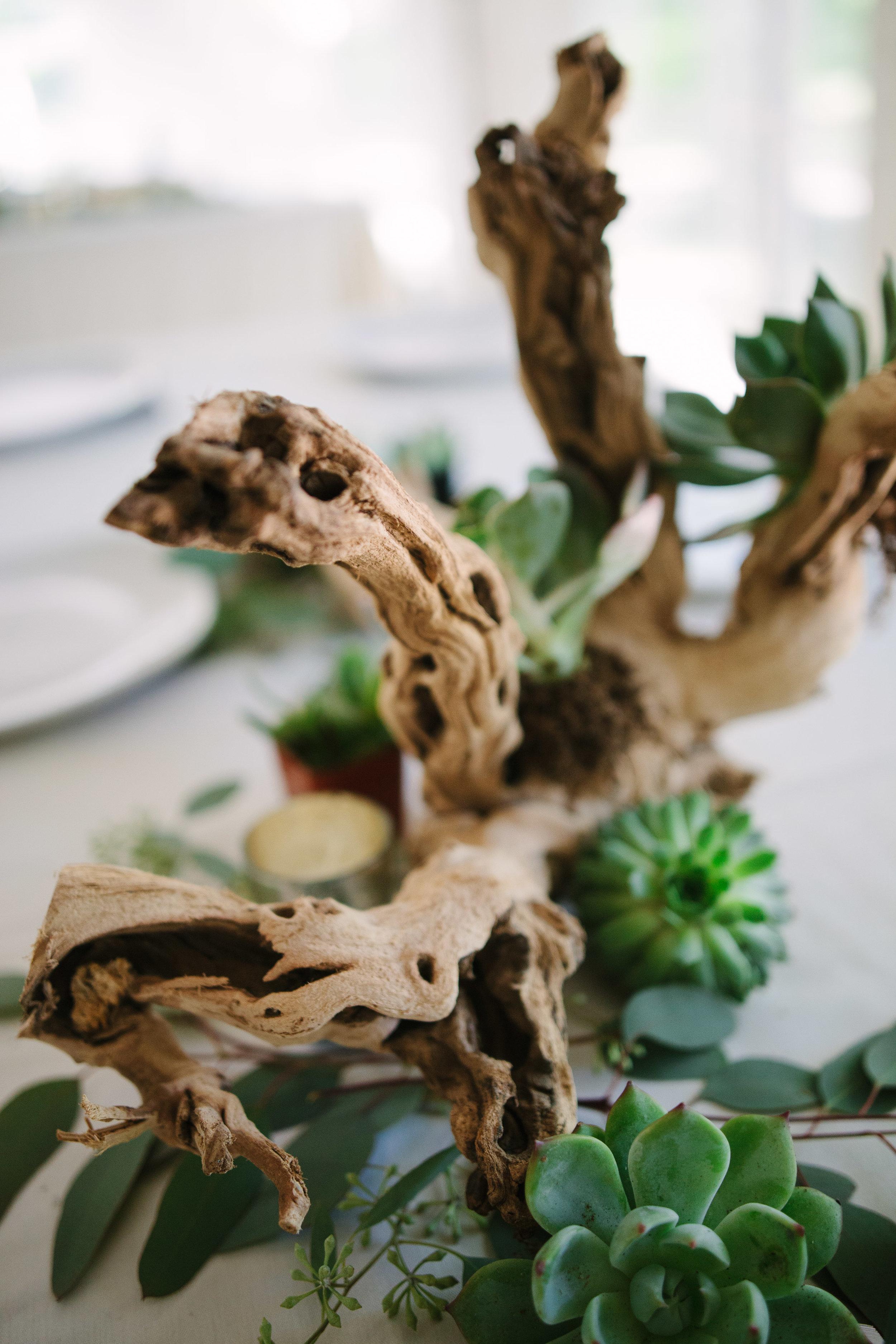 grand_rapids_wedding_rockford_wedding_richard_app_gallery_wedding_grand_rapids_wedding_photographer_summer_wedding_wabasis_lake_park_wedding_rustic_wedding-42.jpg