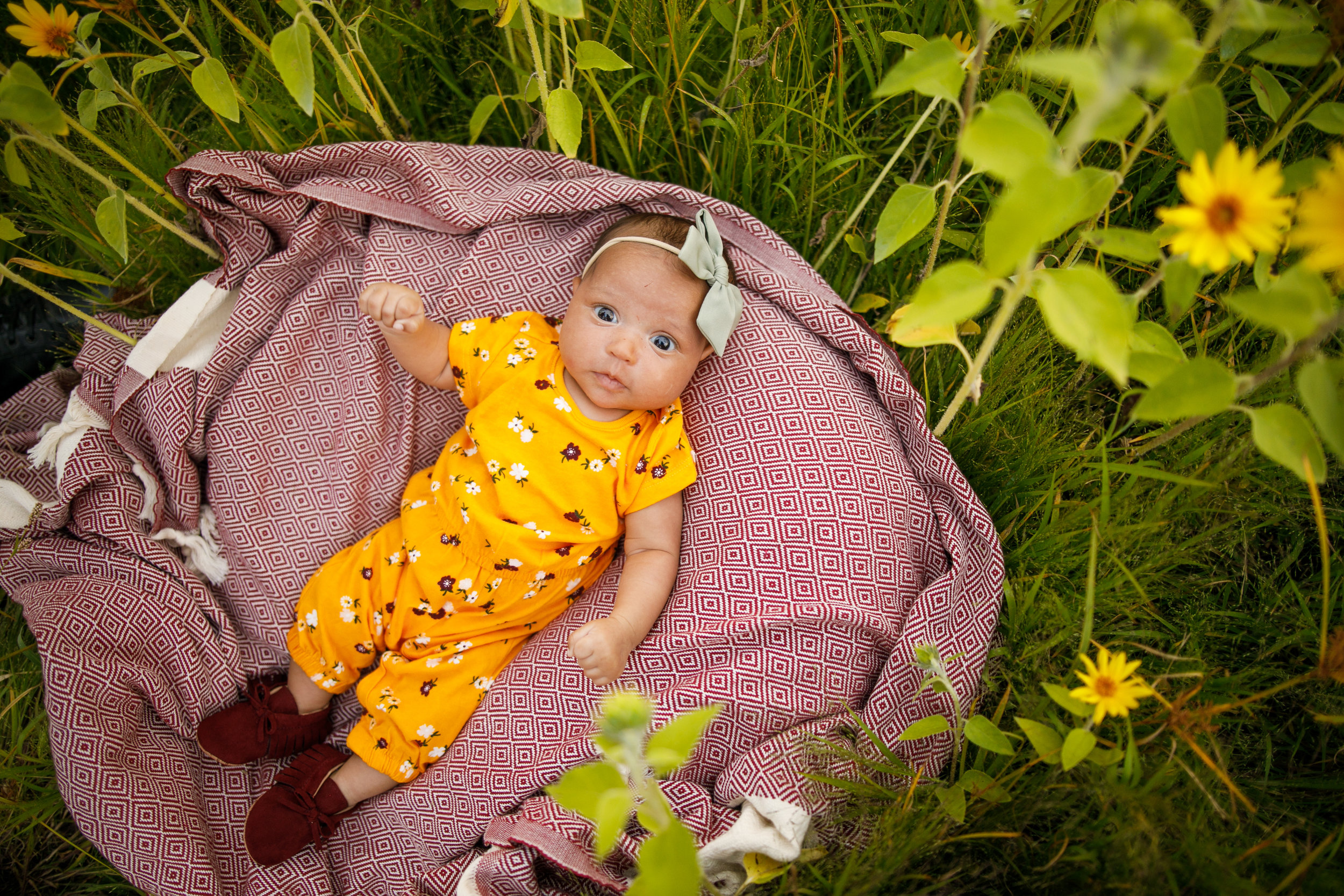 Morris Family Summer 2019 - Grand Rapids Photographer - Grand Rapids Family Photographer - Ed Dunneback and Girls - J Darling Photo 036.jpg