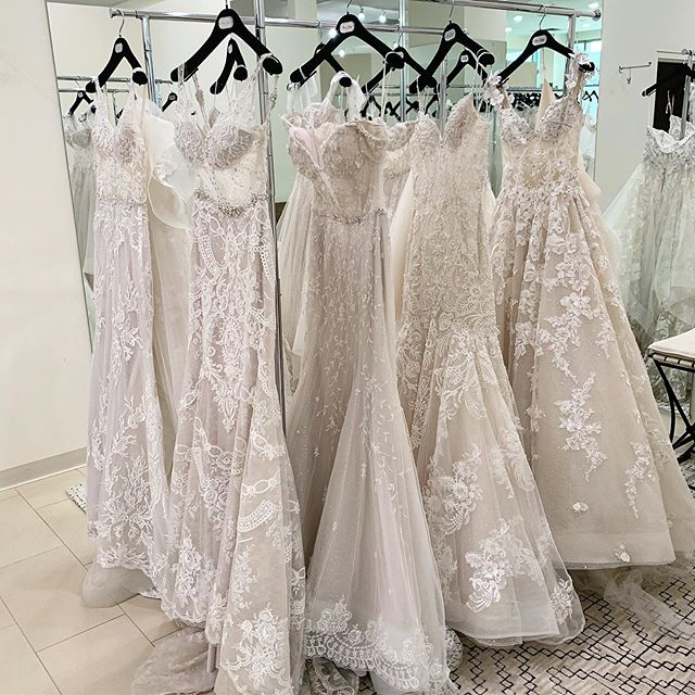 @EveofMilady Trunk Show gowns sparkling and ready to meet brides this weekend! ✨✨