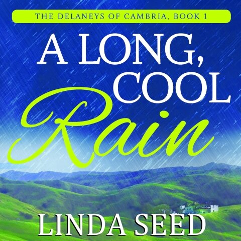First of a new romance series from Linda Seed!  The wealthy Delaney brothers….