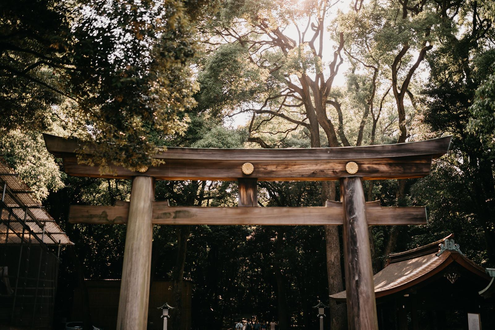 Entrance of Meiji Jingu Shrine in Yoyogi Park Tokyo Japan surrounded by forest