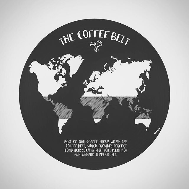 Fun fact: most of our coffee is grown in specific regions known as the coffee belt, which provide perfect conditions for growing beans. -  #coffee #coffeelover #adobeillustrator #cafe #adobe #graphicdesign #goodmorning #designer #design #coffeebelt #maps #map #globe #earth #illustrator #vector #drinkcoffee