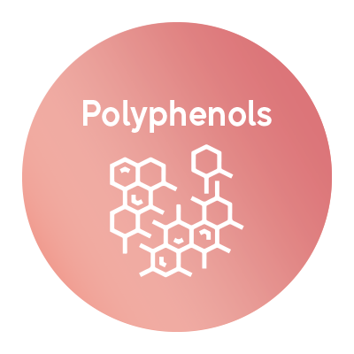 polyphenols.png