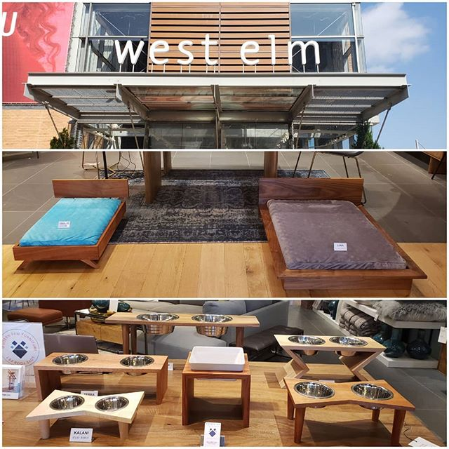 Pop up at West Elm Mockingbird Station in Dallas. Come out and see us and our adorable pet furniture! #westelm #PetFurniture #MidCenturyModern #DogBed #followme #petfeeders