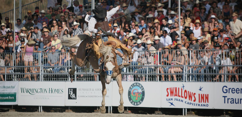 2_Saddle-Bronc.jpg