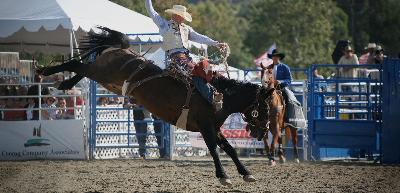 4_Saddle-Bronc.jpg