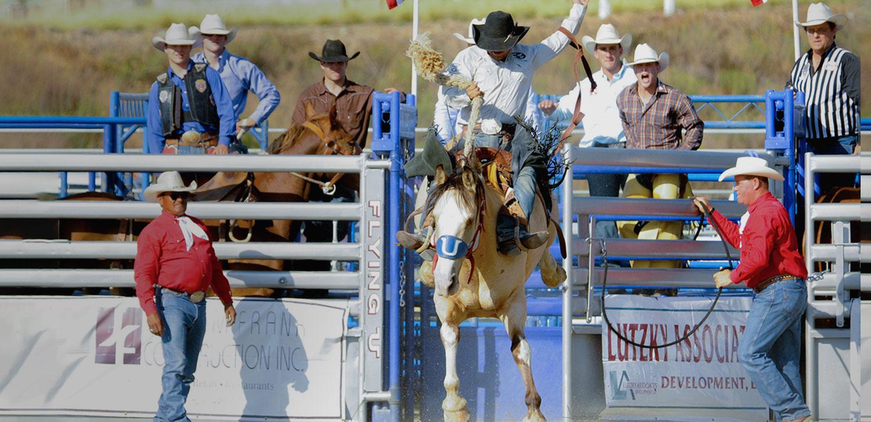 5_Saddle-Bronc.jpg