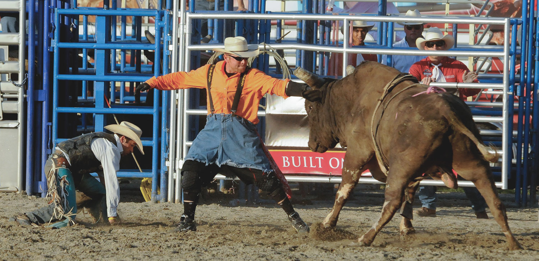 5_Bull-Riding.jpg