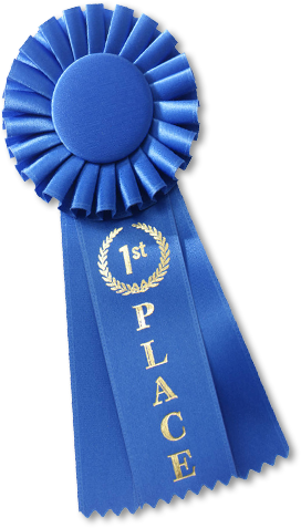 Royal Palm Literary Award — First Place Literary Fiction -