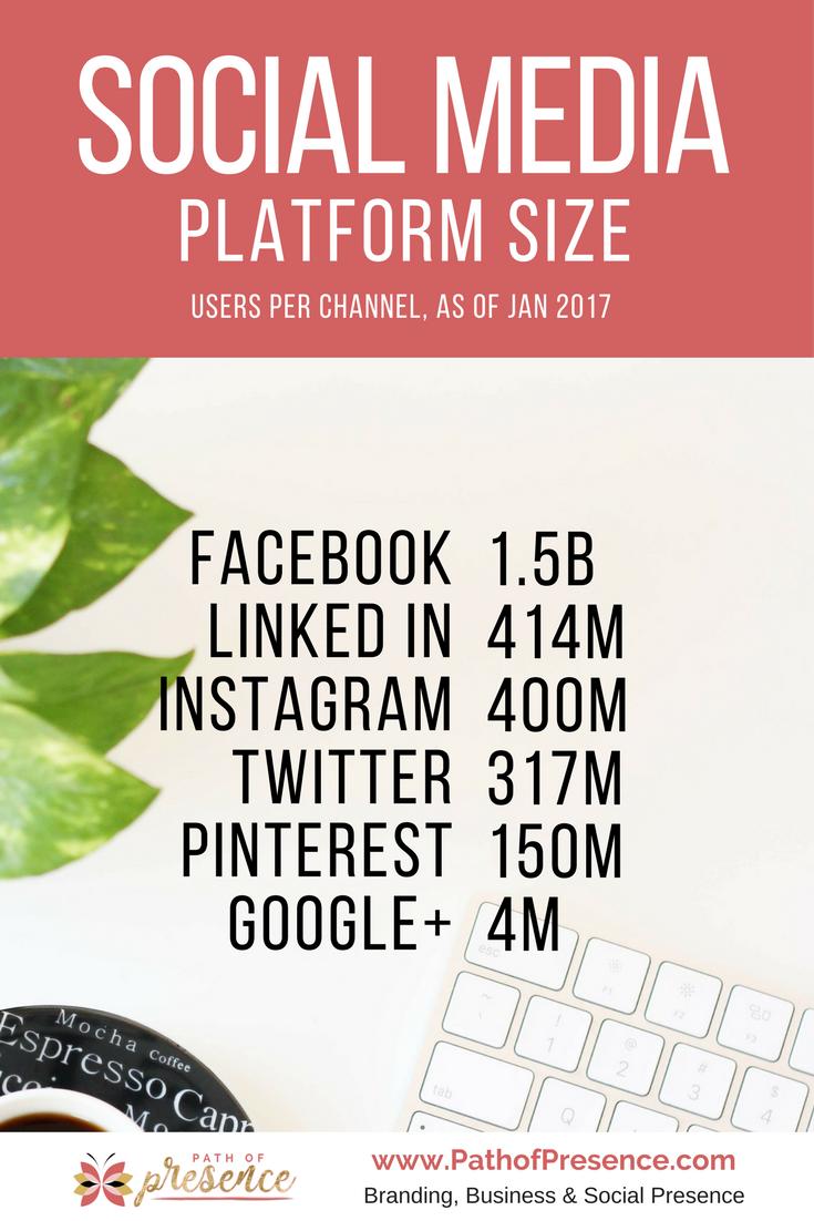 Social Media Platform Size