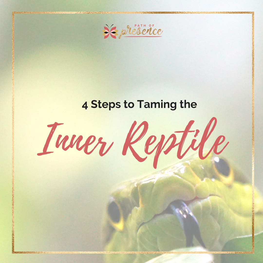 4 STeps to taming the inner reptile you need to know - how aggression plays a in our relationships - and how to be present to it. :: PathofPresence :: Evelyn Foreman