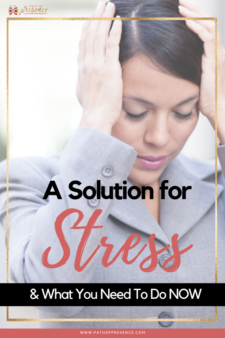 A Solution for Stress and What You Need to Do Now :: Path of Presence :: Every Foreman :: Stop Drop and Breath :: The Stress Response.