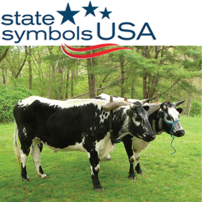 Randall Linebacks named Vermont's Official State Heritage Breed of Livestock